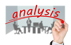 HR Analysts